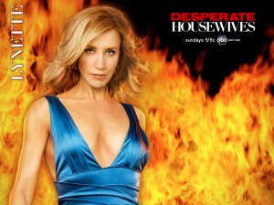 desperate housewives lynette
