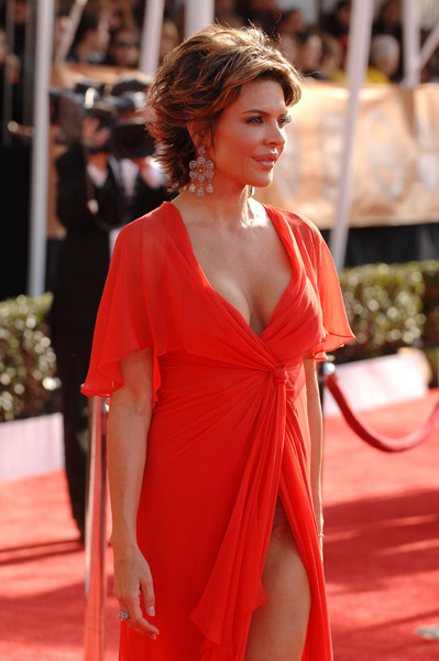 lisa-rinna-at-the-tnttbs-broadcast-of-the-15th-annual-screen-actors-guild-awards2