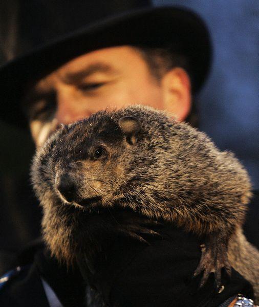 Groundhog Day 2009