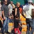 Blake Lively was spotted in New York going solo with a pumpkin in hand. Despite rumors of her recent split with fling Leonardo Dicaprio, the Gossip Girl star was looking...