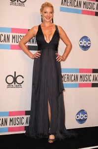 Katherine Heigl Dresses