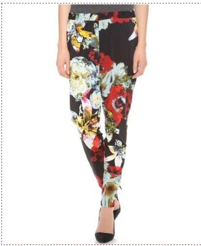 Alice and Olivia Floral Pants