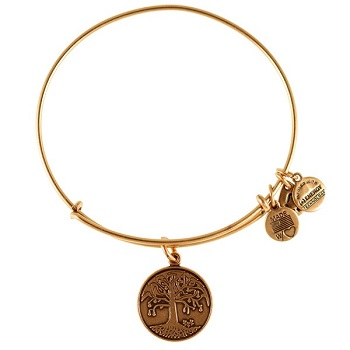 alex and ani charms